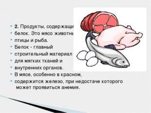 2.Продукты, содержащие белок. Это мясо животных, птицы и рыба. Белок - главн