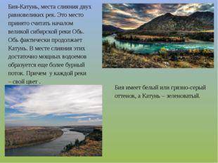 Бия-Катунь, места слияния двух равновеликих рек. Это место принято считать на