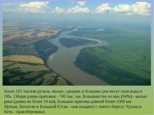 Более 161 тысячи ручьев, малых, средних и больших рек несут свои воды в Обь.
