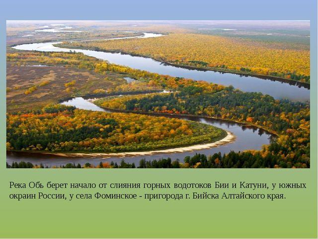 Река Обь берет начало от слияния горных водотоков Бии и Катуни, у южных окраи...