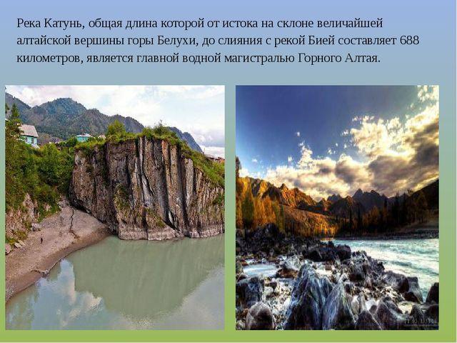 Река Катунь, общая длина которой от истока на склоне величайшей алтайской вер...