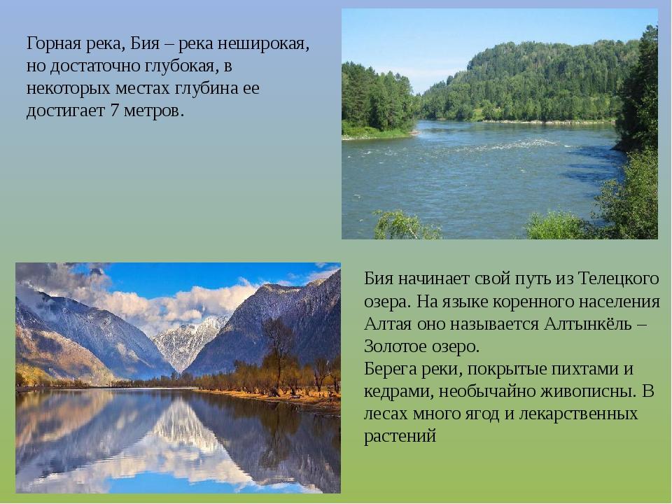 Бия начинает свой путь из Телецкого озера. На языке коренного населения Алтая...