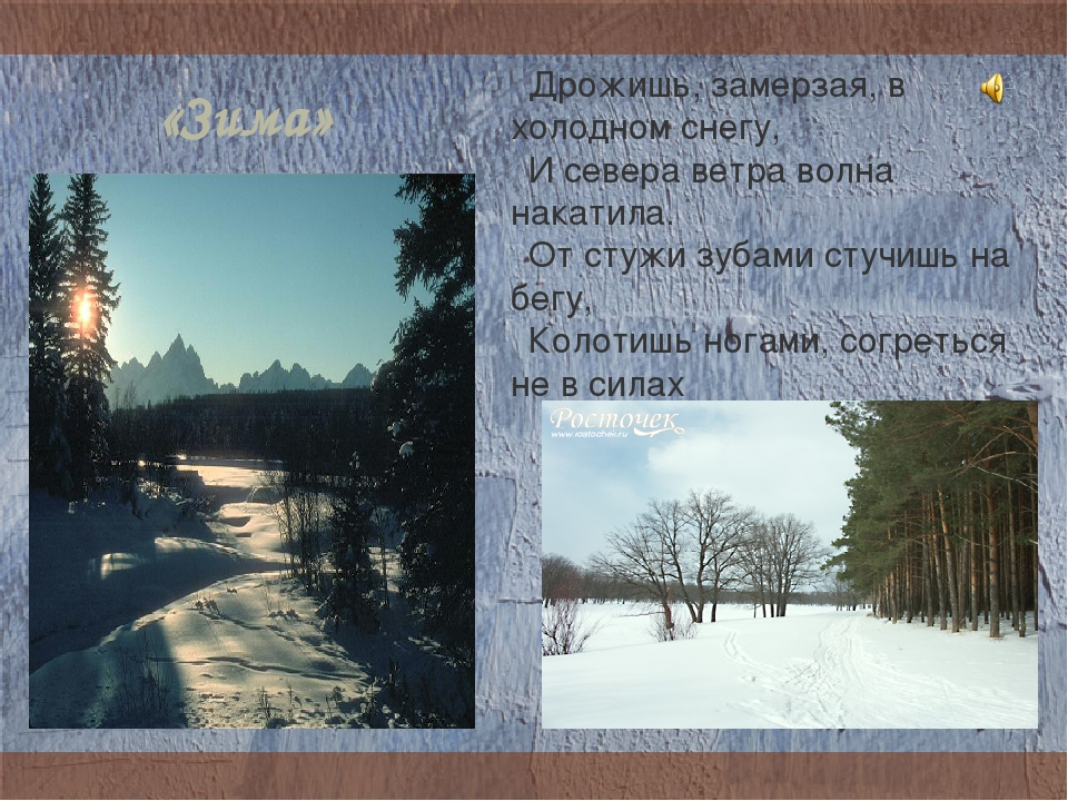 «Зима» Дрожишь, замерзая, в холодном снегу, И севера ветра волна накатила. От...