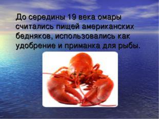 До середины 19 века омары считались пищей американских бедняков, использовал