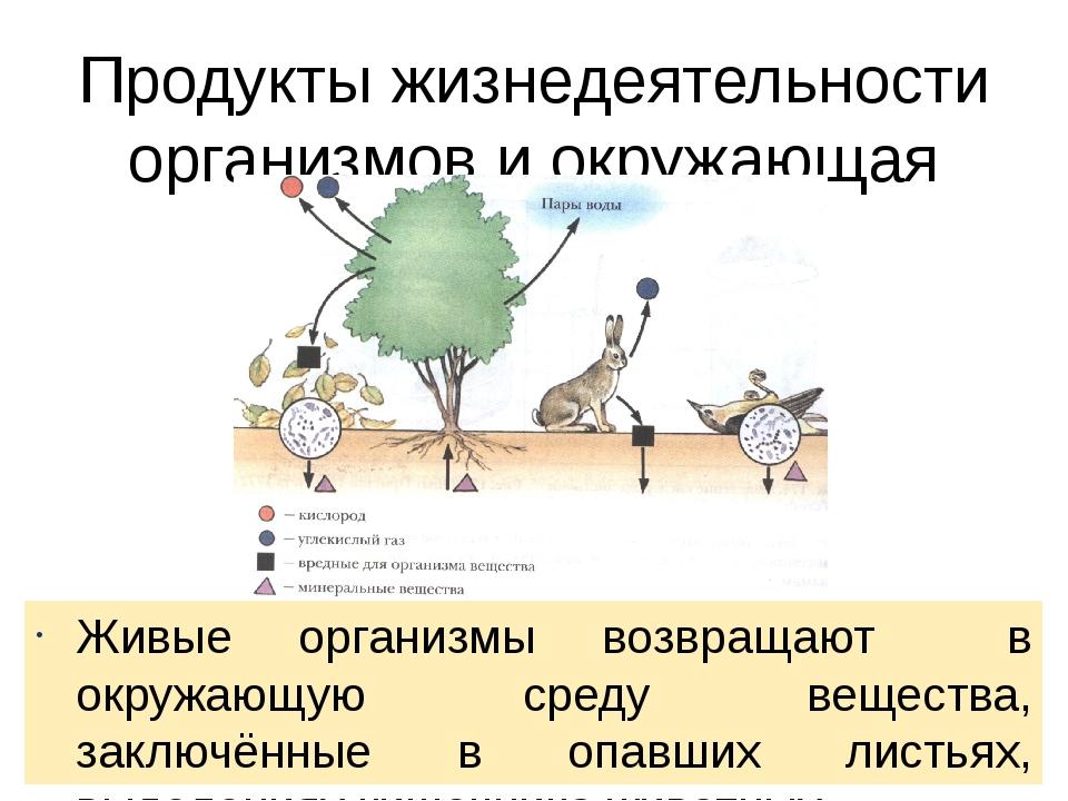 Продукты жизнедеятельности организмов и окружающая среда Живые организмы возв...