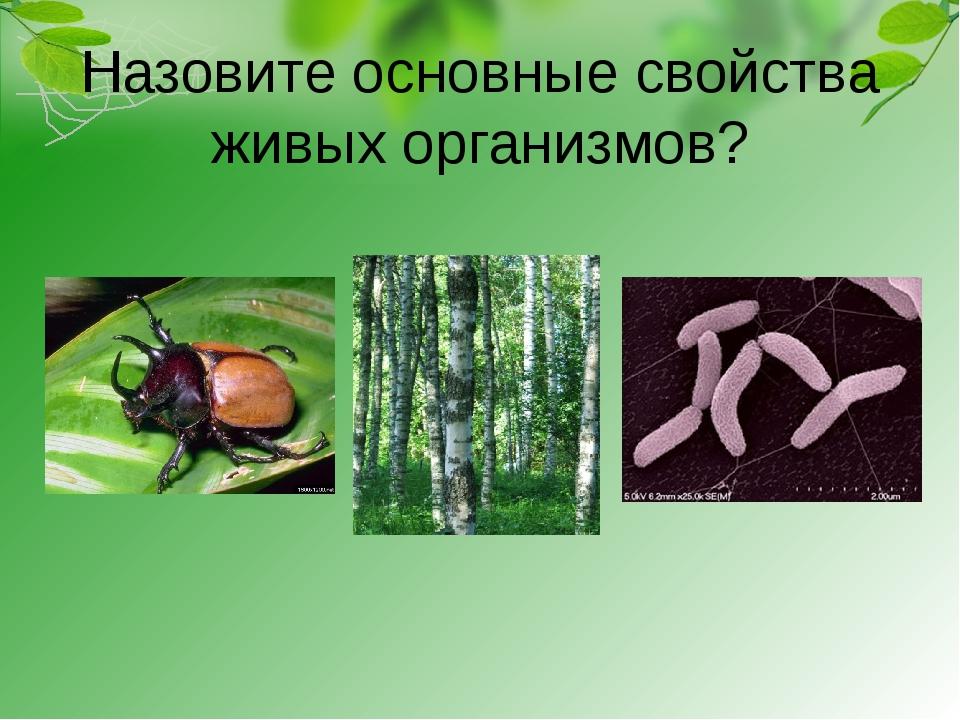 Назовите основные свойства живых организмов?