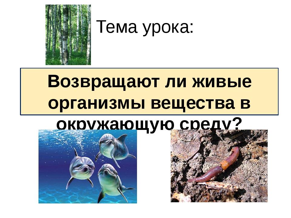 Возвращают ли живые организмы вещества в окружающую среду? Тема урока: