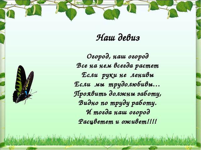 Наш девиз Огород, наш огород Все на нем всегда растет Если руки не ленивы Есл...