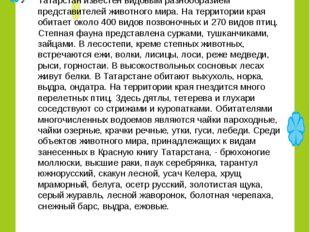 хайваннар дөньясы Татарстан известен видовым разнообразием представителей жив