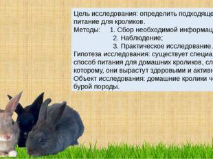 Цель исследования: определить подходящее питание для кроликов. Методы: 1. Сбо