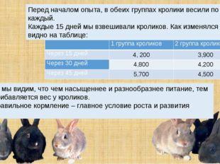 Перед началом опыта, в обеих группах кролики весили по 3,5 кг каждый. Каждые