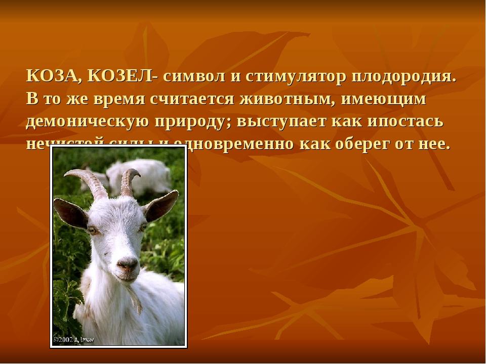КОЗА, КОЗЕЛ- символ и стимулятор плодородия. В то же время считается животны...