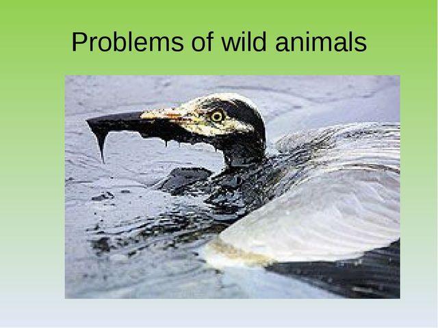 Problems of wild animals