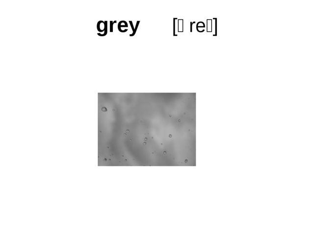 grey [ɡreɪ]