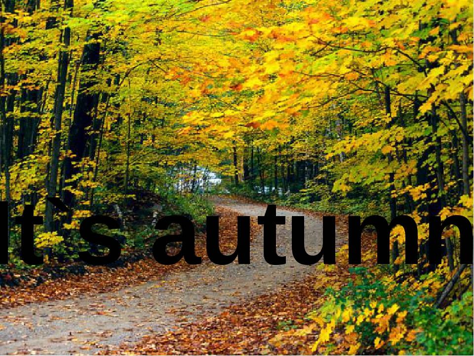 It`s autumn...