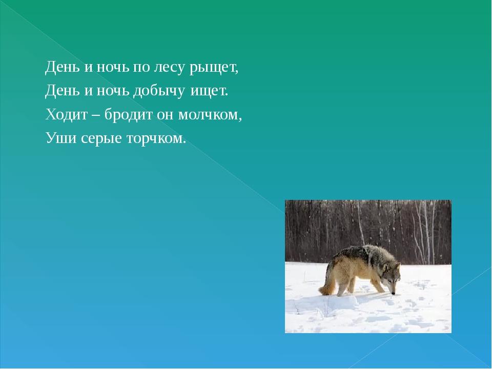 День и ночь по лесу рыщет, День и ночь добычу ищет. Ходит – бродит он молчком...