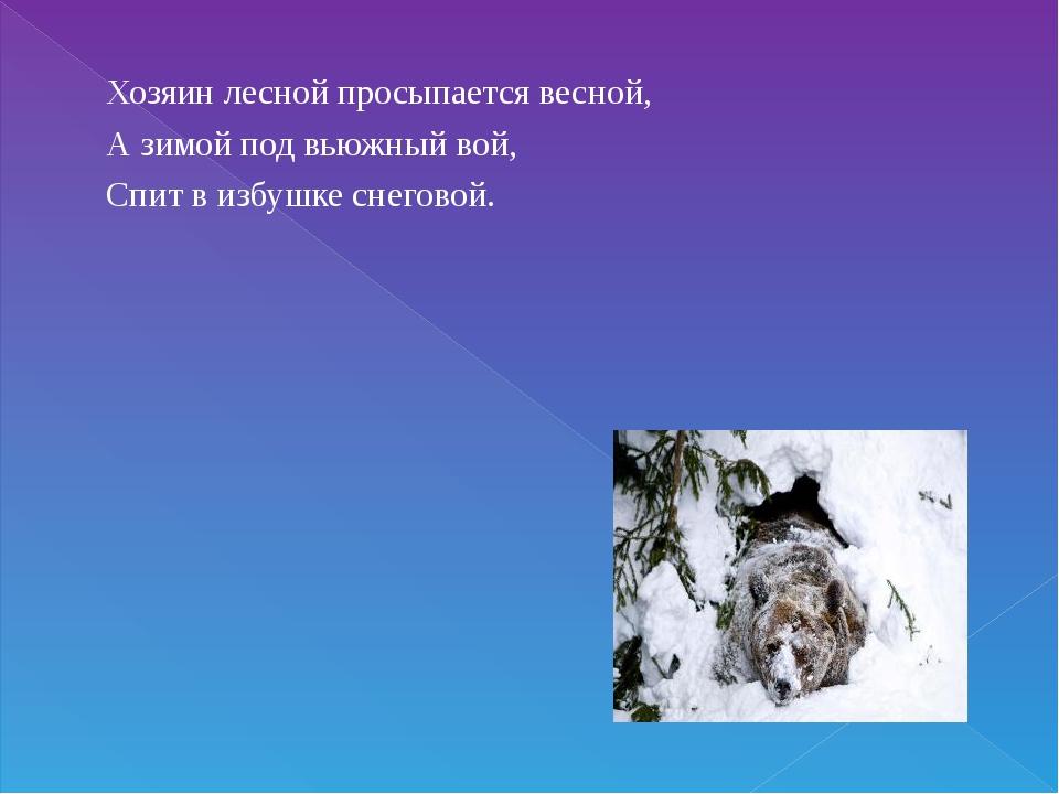 Хозяин лесной просыпается весной, А зимой под вьюжный вой, Спит в избушке сне...