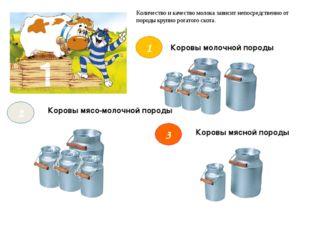 Коровы молочной породы Коровы мясной породы Коровы мясо-молочной породы 1 2 3