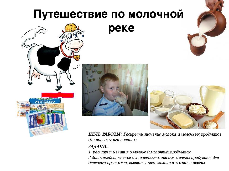 Путешествие по молочной реке ЦЕЛЬ РАБОТЫ: Раскрыть значение молока и молочных...