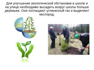 Для улучшения экологической обстановки в школе и на улице необходимо высадить