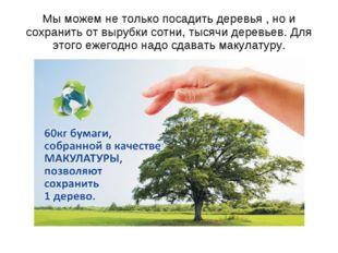 Мы можем не только посадить деревья , но и сохранить от вырубки сотни, тысячи