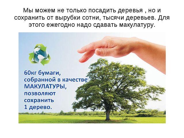 Мы можем не только посадить деревья , но и сохранить от вырубки сотни, тысячи...