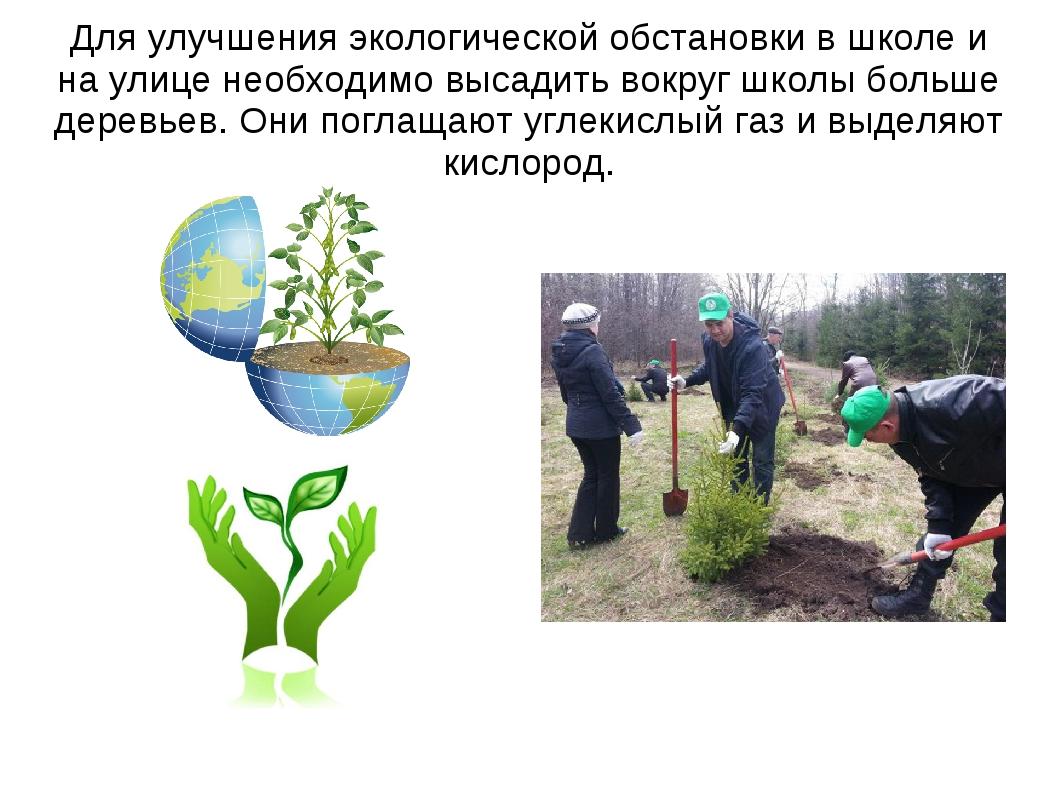Для улучшения экологической обстановки в школе и на улице необходимо высадить...