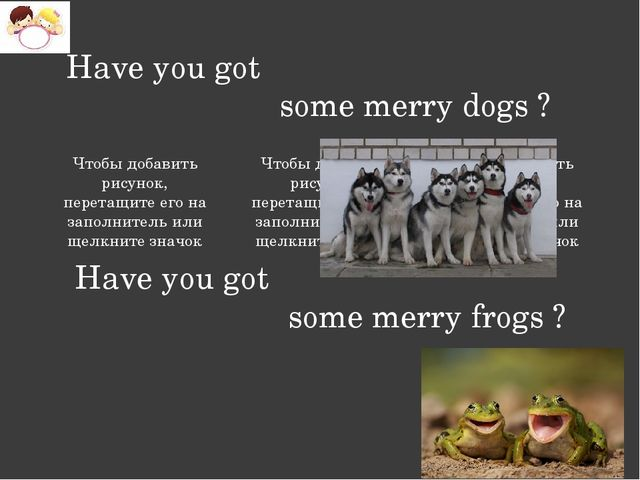 Have you got some merry dogs ? Have you got some merry frogs ? Заголовок раз...