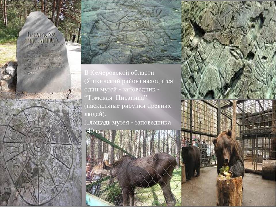 В Кемеровской области (Яшкинский район) находится один музей - заповедник -...