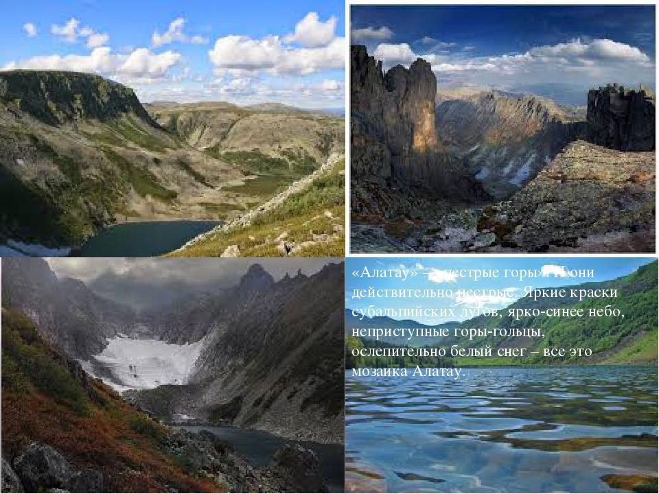 «Алатау» – «пестрые горы». И они действительно пестрые. Яркие краски субальп...