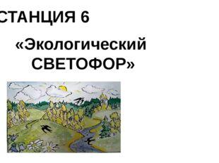 СТАНЦИЯ 6 «Экологический СВЕТОФОР»