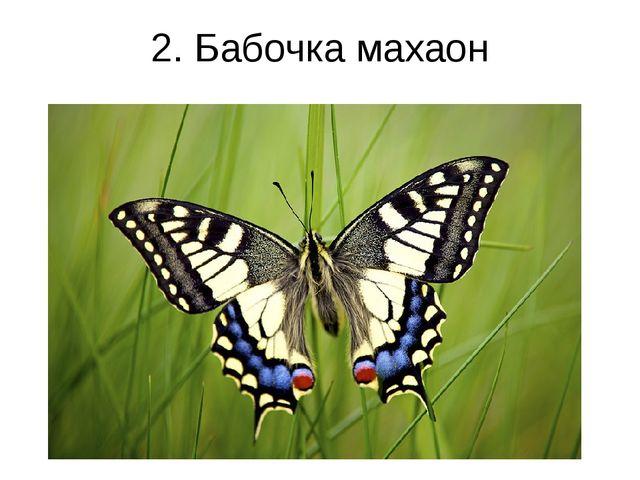 2. Бабочка махаон