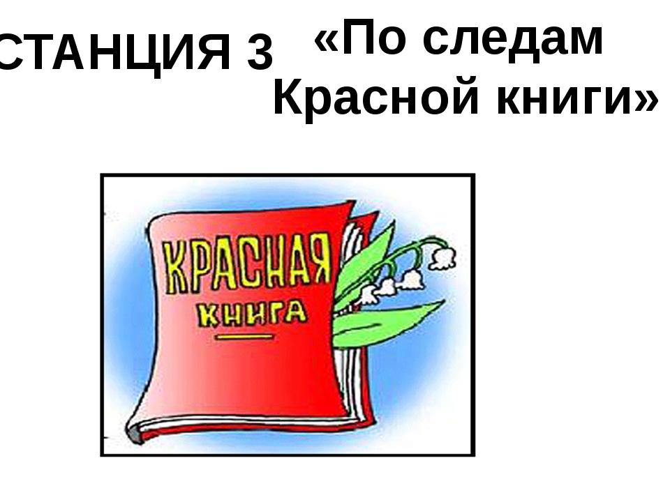 СТАНЦИЯ 3 «По следам Красной книги»