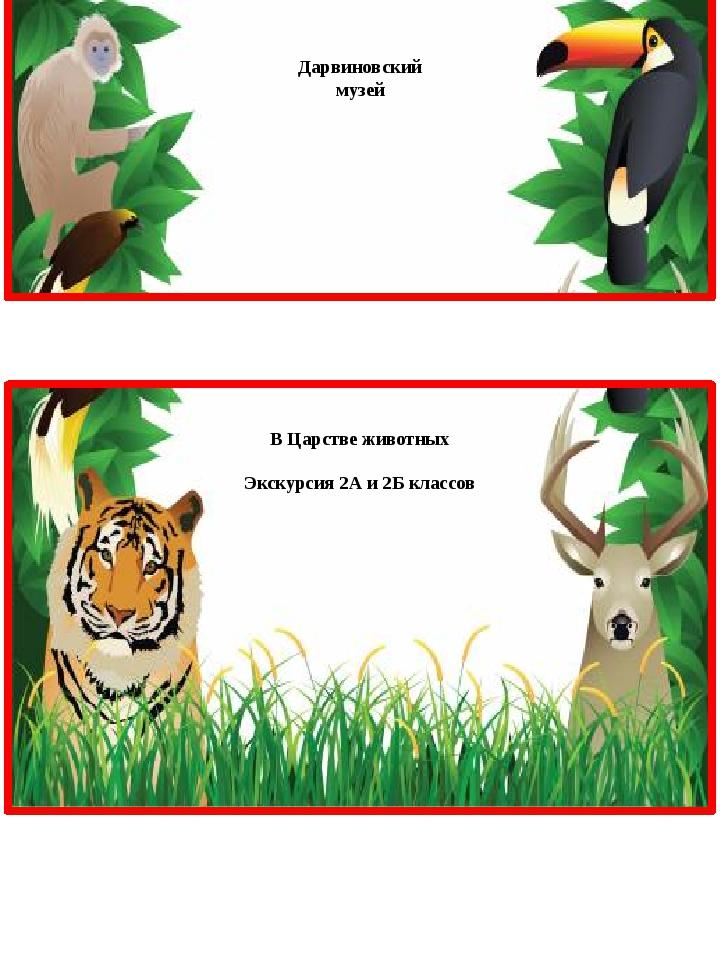 Дарвиновский музей В Царстве животных Экскурсия 2А и 2Б классов