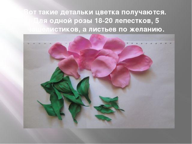 Вот такие детальки цветка получаются. Для одной розы 18-20 лепестков, 5 чашел...