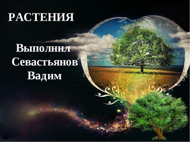 РАСТЕНИЯ Выполнил Севастьянов Вадим