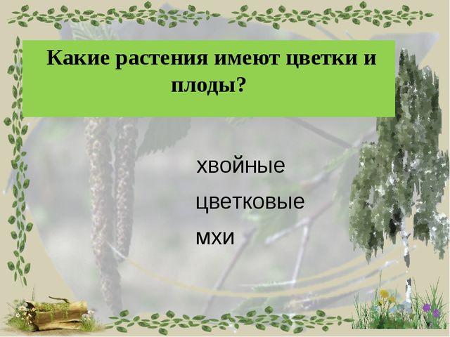Найди верное утверждение. Мхи – жители воды. У мхов нет корней, цветков и пл...
