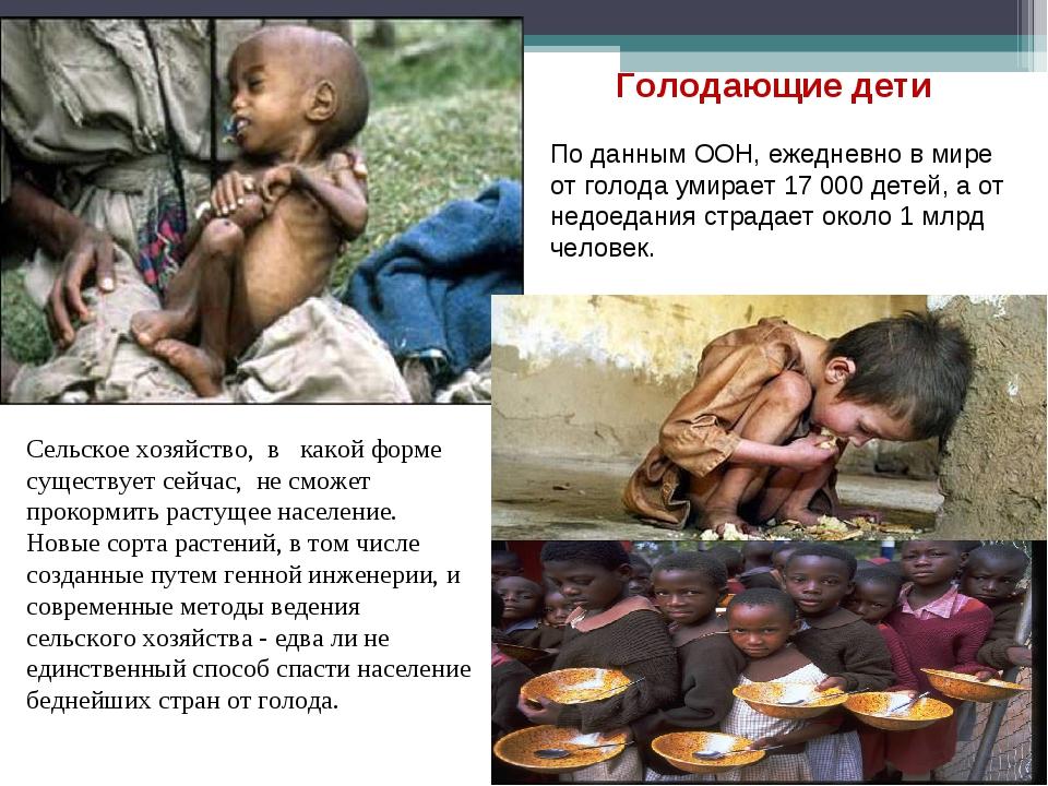 По данным ООН, ежедневно в мире от голода умирает 17 000 детей, а от недоедан...