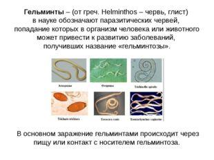 Гельминты – (от греч. Helminthos – червь, глист) в науке обозначают паразитич