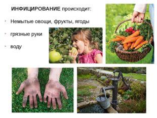 ИНФИЦИРОВАНИЕ происходит: Немытые овощи, фрукты, ягоды грязные руки воду