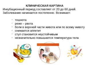 КЛИНИЧЕСКАЯ КАРТИНА Инкубационный период составляет от 20 до 60 дней. Заболев