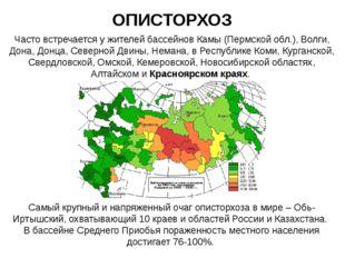 ОПИСТОРХОЗ Часто встречается у жителей бассейнов Камы (Пермской обл.), Волги,