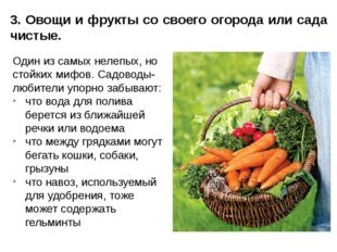 3. Овощи и фрукты со своего огорода или сада чистые. Один из самых нелепых, н
