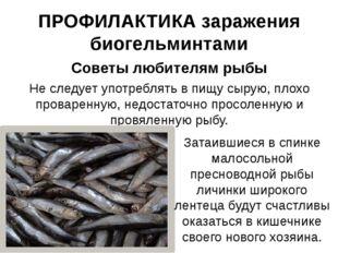 ПРОФИЛАКТИКА заражения биогельминтами Советы любителям рыбы Не следует употре