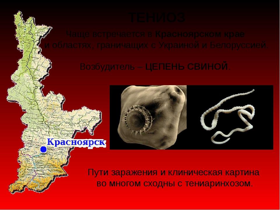 ТЕНИОЗ Чаще встречается в Красноярском крае и областях, граничащих с Украиной...