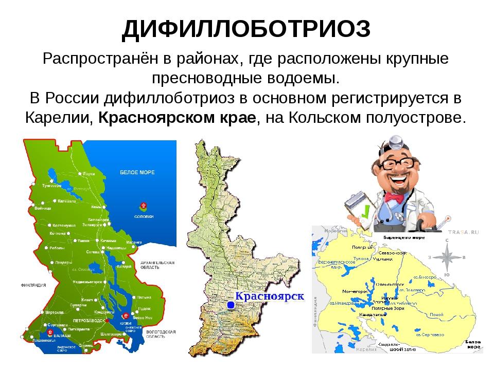 ДИФИЛЛОБОТРИОЗ Распространён в районах, где расположены крупные пресноводные...