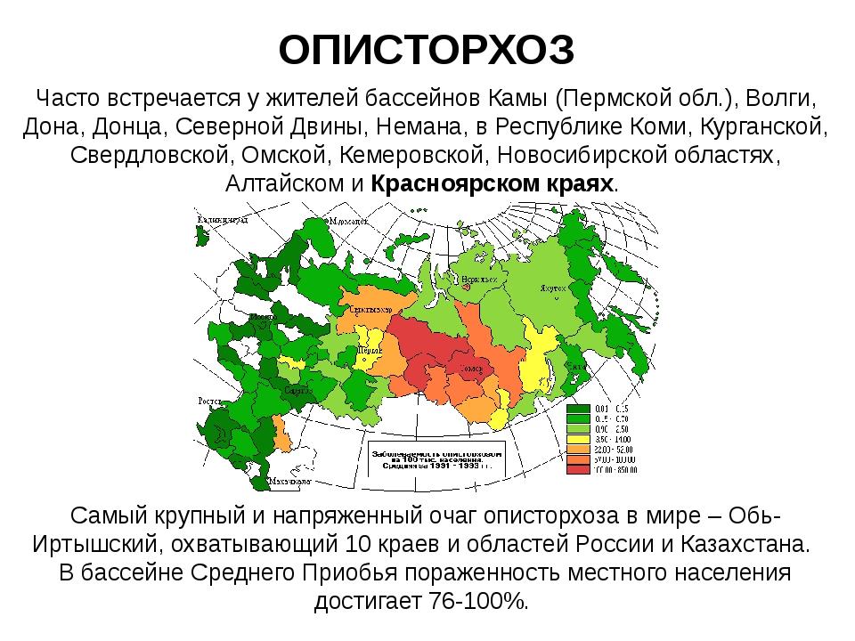 ОПИСТОРХОЗ Часто встречается у жителей бассейнов Камы (Пермской обл.), Волги,...