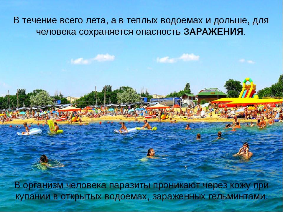 В течение всего лета, а в теплых водоемах и дольше, для человека сохраняется...