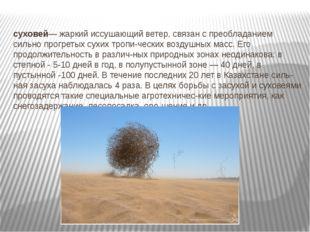 суховей— жаркий иссушающий ветер, связан с преобладанием сильно прогретых сух