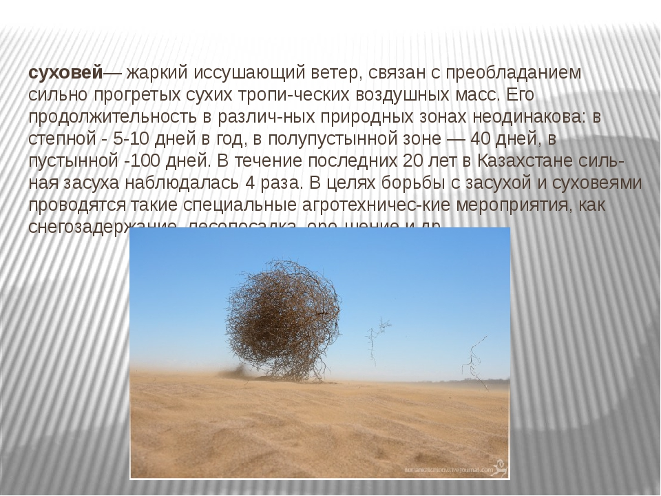 суховей— жаркий иссушающий ветер, связан с преобладанием сильно прогретых сух...